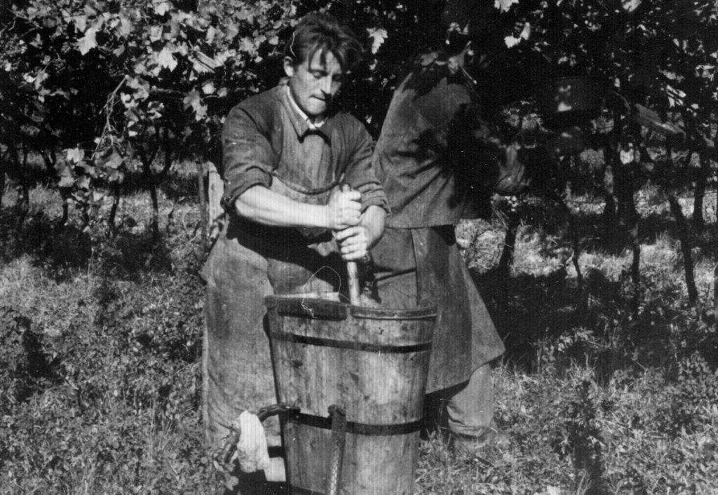 Einmaischen im Weingut